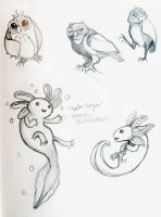 Salamanders and Owls by angry-green-toast