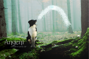 Angeni Banner by jar7431