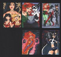 DC's Women of Legend artist proofs by dsoloud