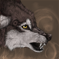 .:No Need For Being Rude:. by WhiteSpiritWolf