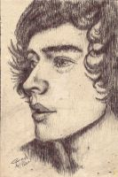 Harry Styles by inacloudyday