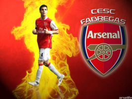 Cesc Fabregas by arselife