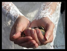 Wedding Hands by NorN