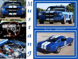 Blue GT collage by puddlz