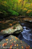 Little Stoney Creek Oct 09 II by TRBPhotographyLLC