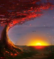 Cherry Tree Sunset by TyphonArt