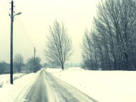 ordinary snowy day: winter road by snusmumrikenn