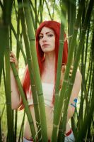 Fairy Tail by Miko-Bura