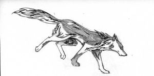 Wolf Drawing 3 - Landing Wolf by Aidelon