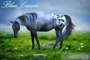 Blue Cream by JuneButterfly-stock