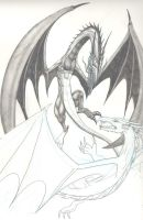 Dragons in duel by dragonhuntr