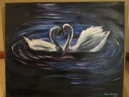 Swans by kaylahoulihan
