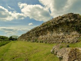 Roman wall - Silchester by PhilsPictures