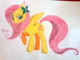 fluttershy by perry99