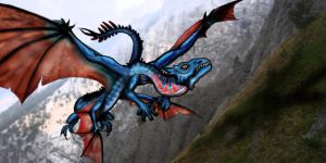 fly fly by terra-icognita-topos