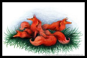 Foxes by LadyFromEast