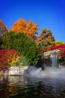 autumn at the zoo by redbeard31