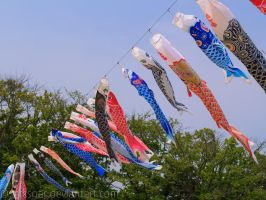 Koinobori by larksgar