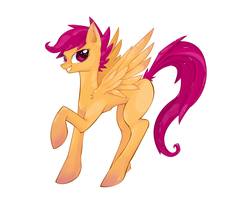 Scootaloo by Aeroflyte