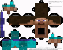 Minecraft Player Cubeecraft by Mariorocks655