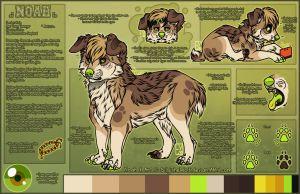 .: Noah Official Sheet Ref 2015 :. by SillyTheWolf