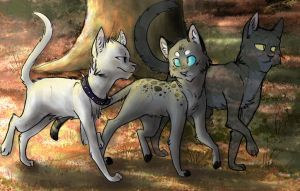 That summer we walked together by MoonRaven2