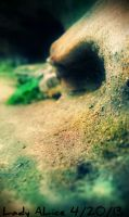 A Wave of Moss by AliceLovesChes