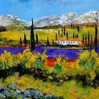 Provence 775120 by pledent