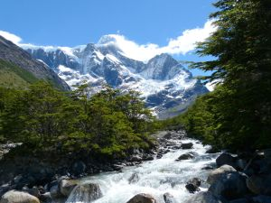 Sendero a Torres del Paine by chuax