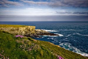 Mizen Head, Cork, Ireland by mole2k