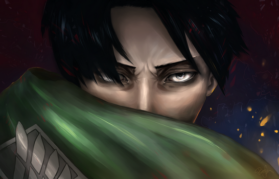 Levi / Rivaille by 6VCR
