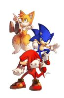 Team Sonic by bluekomadori