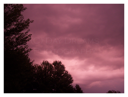 Pink Hue 2 by DayDreamsPhotography