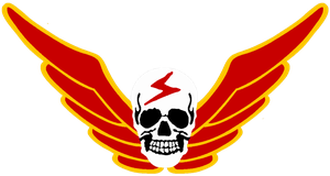 Shadaloo Insignia Wings Only by viperaviator