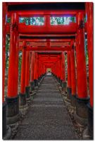 Fushimi Inari-taisha by dragonslayero