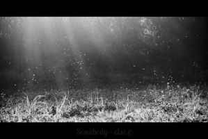 Rayon De Soleil by Somebody--else