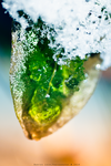 Frozen leaf by B-Tek