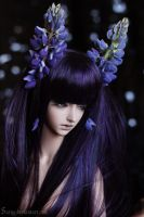 Lady Lupine 2 by Sarqq