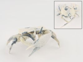 Fiddler Crab by Dreams-Made-Flesh