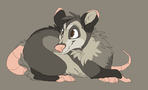 Opossum Design -CO- by MBPanther
