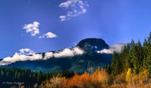 Golden Ears Park by dashakern