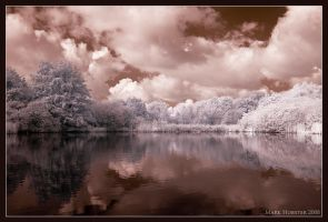 Colours in IR by mahgnitton