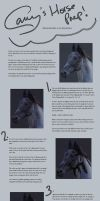 Horse Preparation Tutorial by TheCallyBear