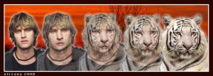 White Tiger :: Scoobyfan1 by Aizxana