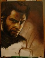 Wolverine - Unfinished by hever