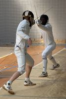 Fencing - 1 by T774