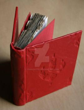 Leather bound Dragontracker's journal by Yerahatte