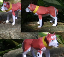 Redd Papercraft Pictures by Aarri2129