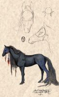 Shadana Night Eclipquine Mare by pegacorna2