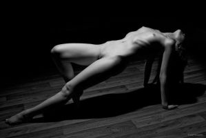 Bodyscapes I by gregd-photography